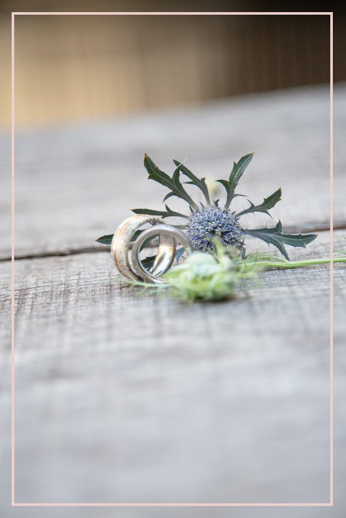 wedding ring photographed with thistle flower
